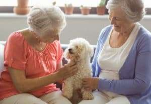 two female residents with dog on couch